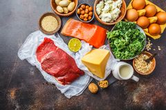 Balanced diet food background. Protein foods: fish, meat, cheese. Balanced diet food background. Protein foods: fish, meat, eggs, cheese, quinoa, nuts on dark royalty free stock photography