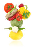 Balanced diet. With fresh vegetables royalty free stock photo
