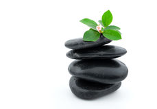 Balanced spa stones with plant Royalty Free Stock Photography