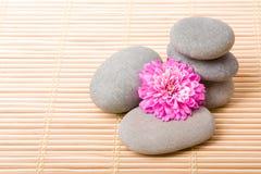 Balanced stones with flower Stock Photo