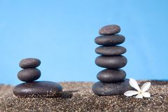 Balanced stones on the sand. And flower Stock Photography