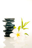 Balanced zen stones with flower and bamboo Royalty Free Stock Photography