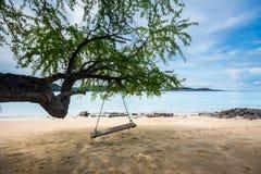Balancee la ejecución del árbol en la isla blanca de Samaesan de la playa, provincia de Chonburi, Tailandia de la cuerda imagenes de archivo