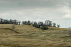 Balanceo Hilly Farmland fotografía de archivo libre de regalías