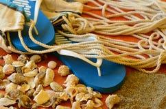 Balanceos, cáscaras y red de la hamaca en fondo de madera Imágenes de archivo libres de regalías