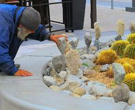 Balancer βράχου του Παλμ Σπρινγκς Καλιφόρνια στοκ εικόνα με δικαίωμα ελεύθερης χρήσης