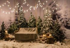 Balancez avec une couverture là-dessus sous les lampes-torches dans une neige-couverture Images libres de droits