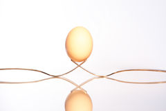 Balancing Egg Royalty Free Stock Photo