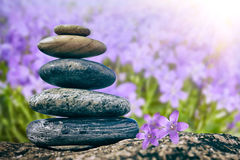 Balancing Pebbles on flower background Royalty Free Stock Photography