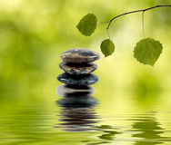 Balancing stones in water and green branch Stock Photography
