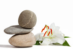 Balancing stones and White Lily. Isolated on white background Stock Images