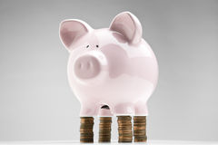 Balancing your budget Royalty Free Stock Photo