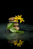 Balancing zen stones on black with yellow flower Royalty Free Stock Photos