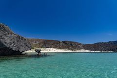 Balandra beach suspended mushroom rock mexico baja california sur royalty free stock image