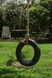Balanço do pneu Fotografia de Stock Royalty Free