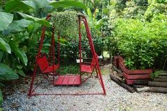 Balanço vermelho que pendura no jardim Fotos de Stock