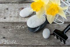 Balansera kiselstenstenar och gulingblommor Arkivbild