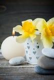 Balansera kiselstenstenar och gulingblommor Fotografering för Bildbyråer