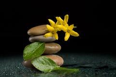 Balansera zenstenar på svart med den gula blomman Fotografering för Bildbyråer
