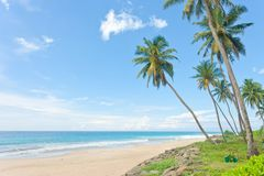 Balapitiya Beach, Sri Lanka - Calming down at the deserted beach. Balapitiya Beach, Sri Lanka - Calming down at the beautiful deserted beach of Balapitiya Royalty Free Stock Photography