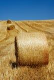 Balas da palha em uma linha Foto de Stock