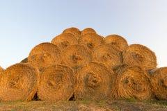 Balas da palha na terra Bala da palha Straw Bales Pacotes da palha do foco seletivo empilhados na pilha Fotografia de Stock