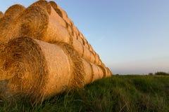 Balas da palha na terra Bala da palha Straw Bales Pacotes da palha do foco seletivo empilhados na pilha Imagem de Stock