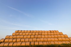 Balas da palha na terra Bala da palha Straw Bales Pacotes da palha do foco seletivo empilhados na pilha Imagem de Stock Royalty Free
