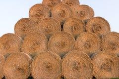 Balas da palha na terra Bala da palha Straw Bales Pacotes da palha do foco seletivo empilhados na pilha Fotografia de Stock Royalty Free