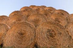 Balas da palha na terra Bala da palha Straw Bales Pacotes da palha do foco seletivo empilhados na pilha Fotos de Stock