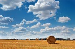 Balas de feno douradas sob o céu nebuloso pitoresco Imagens de Stock