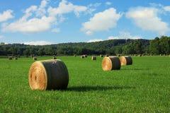 Balas de feno em um campo Foto de Stock Royalty Free