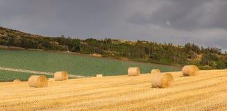 Balas de feno em um campo Fotos de Stock