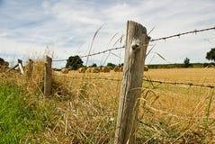 Balas de feno em um campo do verão Fotos de Stock