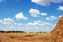 Balas de feno no campo de encontro ao céu nebuloso pitoresco Fotografia de Stock Royalty Free