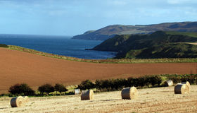 Balas de feno no litoral Foto de Stock Royalty Free
