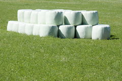 Balas de feno redondas Fotografia de Stock