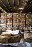 Balas de goma en almacén Foto de archivo libre de regalías