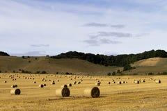 Balas de heno Foto de archivo libre de regalías