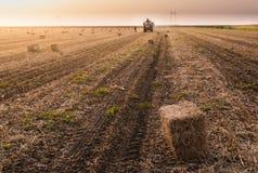 Balas de heno del tiro del granjero en un tractor remolque - balas de trigo Fotografía de archivo libre de regalías