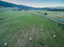 Balas de heno dispersadas en campo verde Fotos de archivo libres de regalías