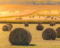 Balas de heno en campo de oro en la puesta del sol Imagenes de archivo