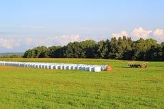 Balas de heno en campo verde Imagenes de archivo
