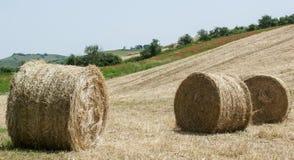 Balas de heno en el campo después de la cosecha imágenes de archivo libres de regalías