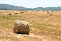 Balas de heno en el campo Portugal Fotografía de archivo