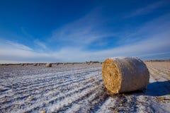 Balas de heno en invierno Fotografía de archivo libre de regalías
