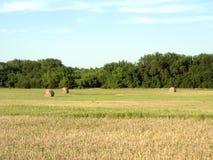 Balas de heno en la última hora de la tarde Sun Foto de archivo libre de regalías