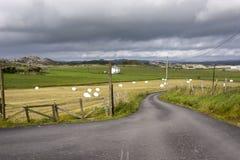 Balas de heno en Noruega Fotografía de archivo