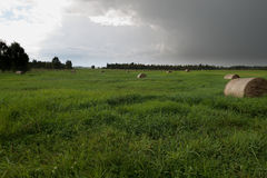 Balas de heno en paisaje de la hierba verde Foto de archivo libre de regalías