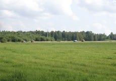 Balas de heno en un campo en Imagen de archivo libre de regalías